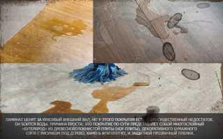 Плитка или ламинат на кухне: сравнительные характеристики