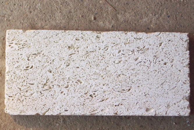 Плитка из белого ракушечника