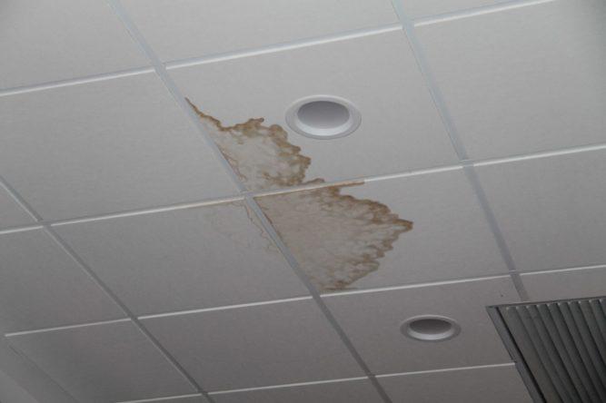 Пятна на потолочной плитке